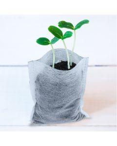 100pcs 247Garden  3.5x4.7in 0.05-Gallon Aeration Seedling Pots/Nursery Fabric Plant Grow Bags  (25GSM 9x12cm Non-woven Eco-Friendly Mini Fabric Pots)