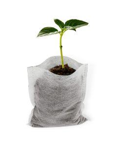 "100pcs 247Garden 5x6"" 0.15-Gallon Eco-Friendly Aeration Seedling Pots/Nursery Fabric Plant Grow Bags (25GSM 13x15cm Non-woven Mini Fabric Pot)"